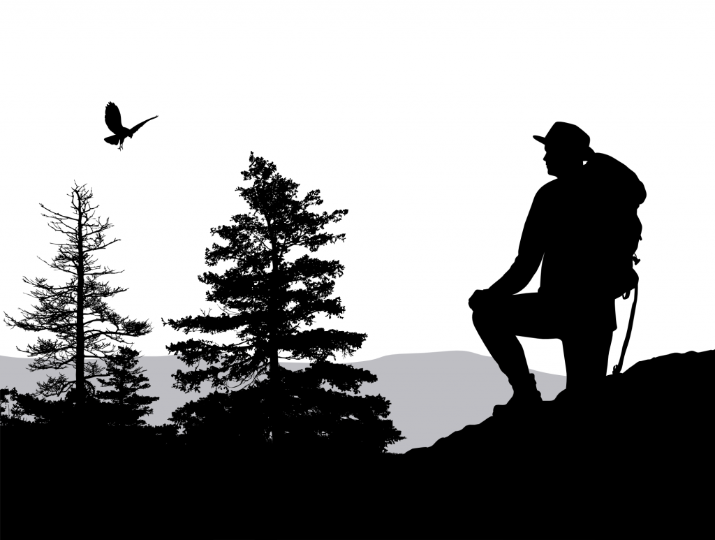 Silhouette of backpacker looking over trees